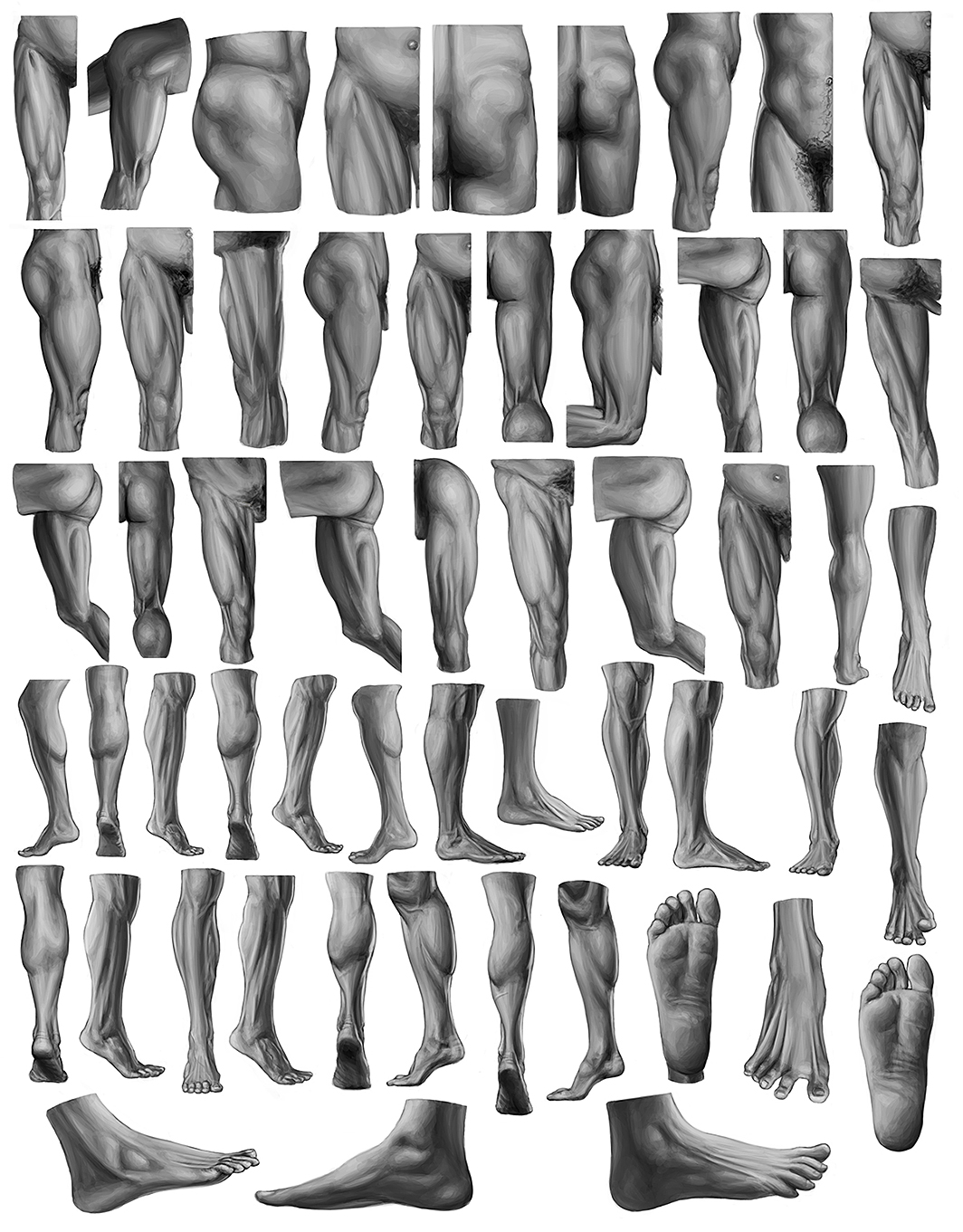 Studies of Lower Body from Eliot Goldfinger's Human Anatomy for Artists